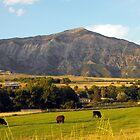 Below the Foothills of Mount Ben Lomond by Jan  Tribe
