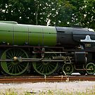 Tornado Peppercorn Class A1 60163 by Julie McBrien