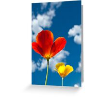 Poppy and sky Greeting Card