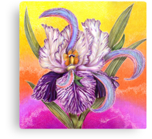 The Paisley Iris: psychedelic trippin' Metal Print