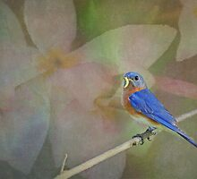 Bluebird Fantasy by Bonnie T.  Barry