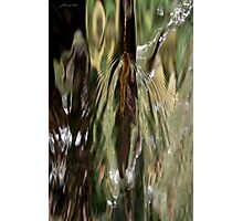 Dances with Water Photographic Print