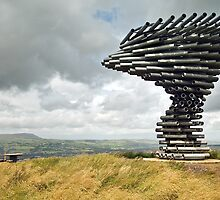 Singing Ringing Tree by Steve  Liptrot