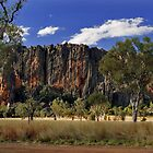 Windjana Gorge by Leanne Robson