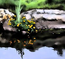 Marsh Marigolds, by Richard Ion