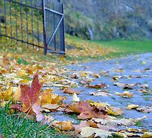 Where the autumn ends... by ViktoryiaN