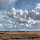 Lincolnshire Wolds Panoramic by Paul Thompson Photography