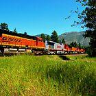 4 BNSF Locomotives  by Borror