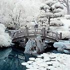 Japanese Garden by Chris Summerville