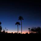 AZ. SUNSET by Bonnie Pelton