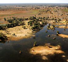 Bird's eye view of the Okavango Delta, Botswana by Sharon Bishop