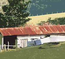 Country Shed  by Virginia McGowan