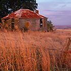 Sunset Glow, Barrabool Hills by Joe Mortelliti