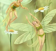 Flower Fairies by Colin Howard