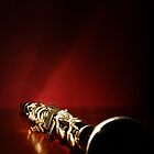 Clarinet by KeepsakesPhotography Michael Rowley