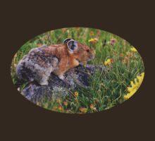 Pika & Wildflowers by William C. Gladish