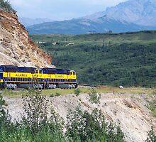 Alaskan Railroad by Dandelion Dilluvio