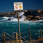 Sydney Tide Pool, Bronte Beach, July 2009 by Gayan Benedict