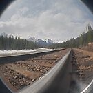 Rocky Mountain Railroad. by veneer