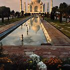 The Taj Mahal with flowers by Neil Bussey