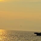 One Evening on Cape May by jayant