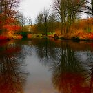 Tiergarten Pond by Jason Bran-Cinaed