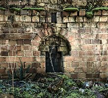 Niche To Nowhere - Newnes - Wollemi National Park, NSW by Jeff Catford