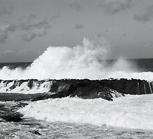 North Shore Swell by dianeanderson