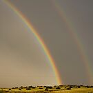 New Mexico Rainbow by BarneyB