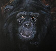 Chimp by Robert David Gellion