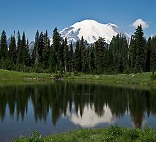 Tipsoo Lake, Mt. Rainier National Park by Barb White