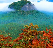 LOOKING GLASS MOUNTAIN* by Chuck Wickham