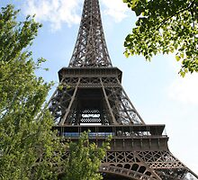 Eiffel Tower by cedriccochez