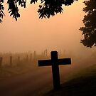 walk in the fog by dc witmer