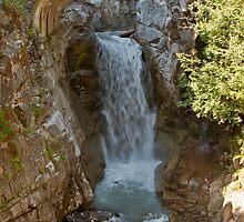 Christine Falls, Mt. Rainier National Park by Barb White