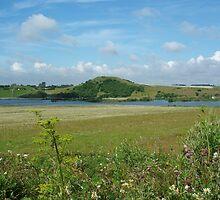 """Hedeland"" (Moorland), Denmark by Tove"