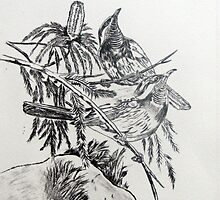 Mangrove Honey Eaters by Faye Doherty