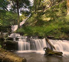 Scalebor Force - Yorkshire Dales by eddiej