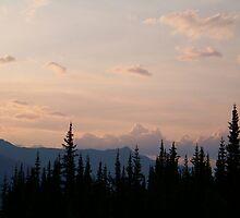 Arctic Sunset by Dandelion Dilluvio