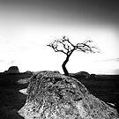 Sparkling Rock  by RichardIsik