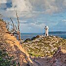 Portrait of Cape Spencer Lighthouse by AllshotsImaging