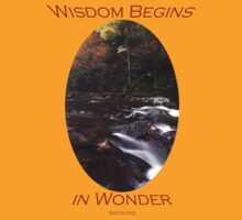 Wisdom Begins in Wonder by William C. Gladish