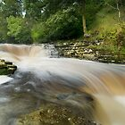 Stainforth Force  by eddiej
