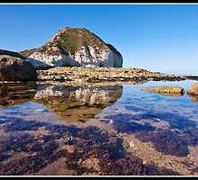 Reflecting on Flamborough Head by Shaun Whiteman