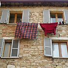 Who in Perugia needs a tumble-drier? by Philip Mitchell