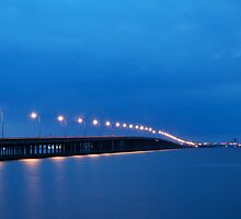 Bay Bridge to Ocean City Maryland by Michael Mill