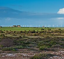 Wattle Point Windfarm - From South Coast Rd by AllshotsImaging