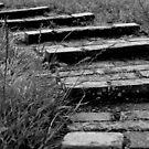 Canal bricks by kindkurse