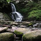 Bushkill Falls 5 by EstherJoy