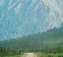 The Dalton Highway by Dandelion Dilluvio